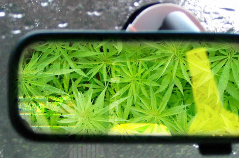alcool cannabis et conduite planete sante. Black Bedroom Furniture Sets. Home Design Ideas
