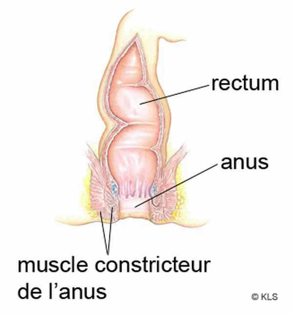 anus - 2Folie le sexe en photo et video porno