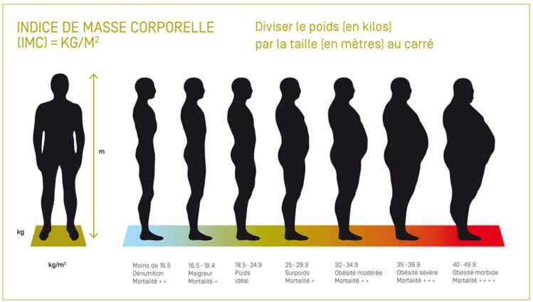 Calcul du pourcentage de graisse - Course pied