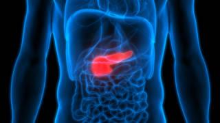Le cancer des testicules reste rare, mais il progresse - Planete sante