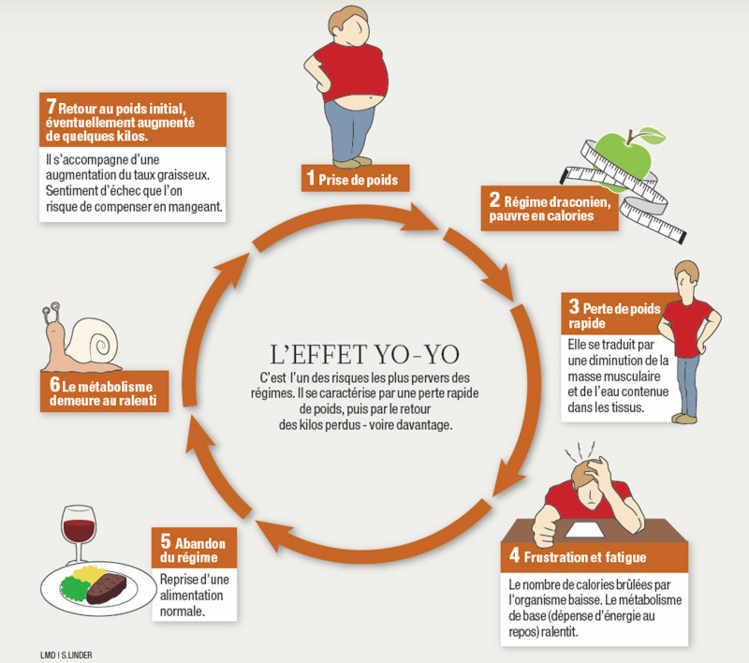 Comprendre la perte de poids