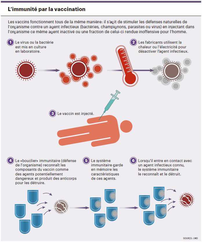 infog_proteger_infections